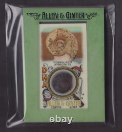 Allen & Ginter Fossilized Ammonite DNA Relic 4 / 25