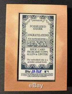 2020 Allen & Ginter Topps Fossilisée Shark Framed Mini Adn Relic / 25 Great White