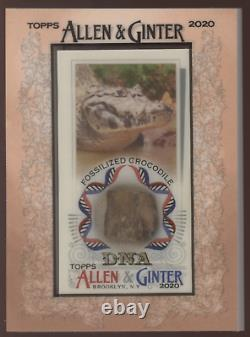 2020 Topps Allen & Ginter Crocodile Encadré Mini Fossilized Dna Relic /25