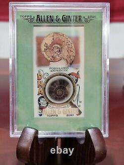 Relique De L'adn D'ammonite Fossilisé D'allen & Ginter 4 / 25